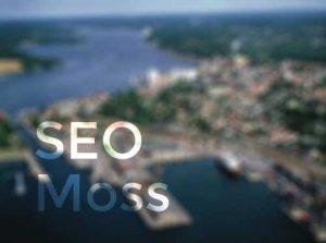 Søkemotoroptimalisering-Moss